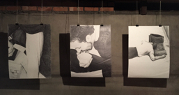 ファルマコン : 医療とエコロジーアートによる芸術的感化